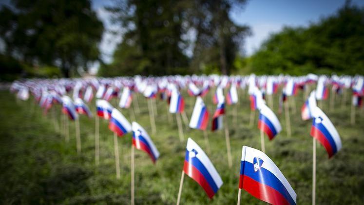 V Tivoliju zastavice za umrle, v Ljubljani rast…